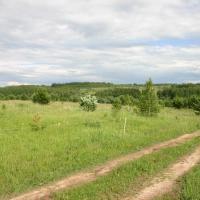 Вид через речку Восьму с Любижской части на вторую половину поселения - Картинскую часть. Май 2010г.